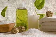 Éléments de thérapie d'arome Images stock