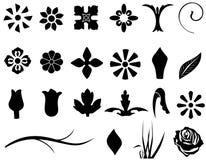 Éléments floraux Photos stock