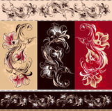 Éléments floraux décoratifs Photos libres de droits