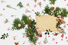 Éléments floraux de nature et vieille enveloppe sur le blanc Photographie stock libre de droits