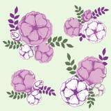 Éléments floraux pour des invitations, des cartes de voeux, des couvertures, etc. Photos libres de droits