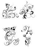 Éléments floraux pour la conception Photo libre de droits
