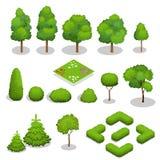 Éléments isométriques d'arbres de vecteur pour le paysage Photographie stock