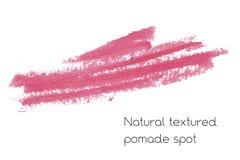 Éléments naturels de conception d'art de pommade de rouge à lèvres Photographie stock libre de droits