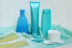 Éléments pour la propreté et cheveu-retirer Photo stock
