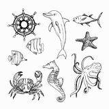 Éléments tirés par la main de sujet marin illustration stock