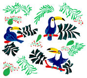 Éléments tropicaux de conception d'été Oiseaux et trop d'isolement de toucan illustration libre de droits