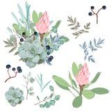 Éléments tropicaux de vacances d'été : fleurs et feuilles Ensemble de vecteur Images stock