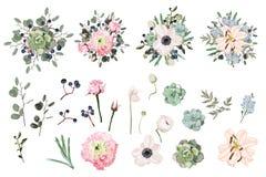 Éléments tropicaux de vacances d'été : fleurs et feuilles Ensemble de vecteur Photo libre de droits