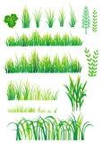 Éléments verts pour la conception illustration libre de droits