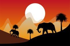 Éléphant à l'arrière-plan de désert Image stock