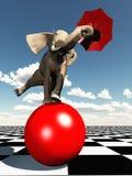 Éléphant équilibrant sur la bille Images libres de droits