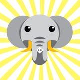 Éléphant animal mignon de bébé Images stock