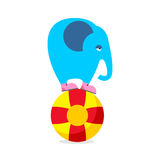 Éléphant bleu sur la boule Exécution de l'animal de cirque Éléphant triste AM illustration stock
