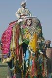 Éléphant coloré Photos libres de droits