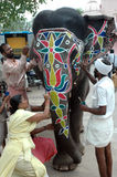 Éléphant décoratif pour le festival de yatra de Rath Photo libre de droits