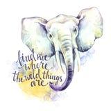 Éléphant d'aquarelle avec l'expression manuscrite d'inspiration Animal africain Illustration d'art de faune Peut être imprimé sur Photos stock
