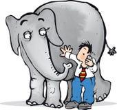 Éléphant dans la chambre Images stock