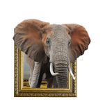 Éléphant dans le cadre avec l'effet 3d Photographie stock