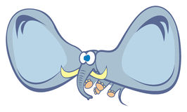 Éléphant dans le vol Photo stock