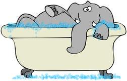 Éléphant dans une baignoire Photo libre de droits