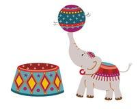 Éléphant de cirque Photos stock