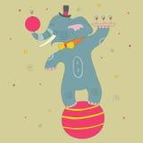 Éléphant de cirque illustration de vecteur