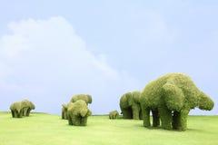Éléphant de famille d'herbe Photographie stock