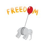 Éléphant de liberté Photographie stock