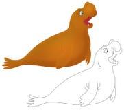 Éléphant de mer Images libres de droits
