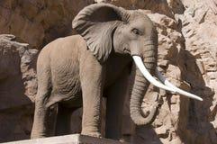 Éléphant en pierre Photos stock