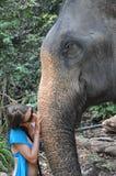 Éléphant et fille Photographie stock