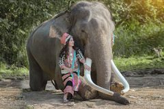Éléphant et mahout Photo libre de droits