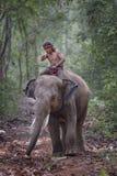 Éléphant et mahout Image stock