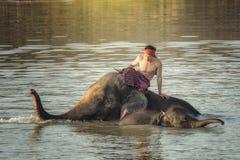Éléphant et mahout Image libre de droits