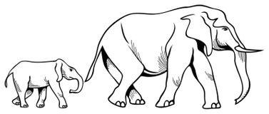 Éléphant et veau illustration stock