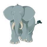Éléphant gris Images stock