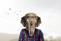 Éléphant habillé en test la chemise Media mélangé Photos libres de droits