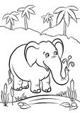 Éléphant jouant avec de l'eau Photos stock