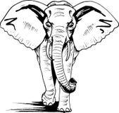 Éléphant L'Afrique, art esquissé Photo libre de droits