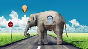 Éléphant-maison sur la route Images libres de droits