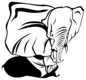 Éléphant masculin Photographie stock libre de droits