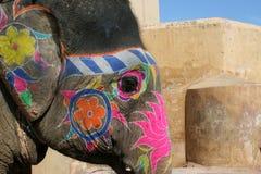 Éléphant peint Photo libre de droits