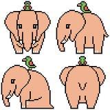 Éléphant réglé d'art de pixel de vecteur Image stock