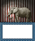 Éléphant républicain Photos stock