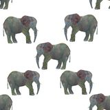 Éléphant sans couture d'aquarelle de modèle d'isolement sur le fond blanc image libre de droits