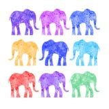 Éléphant texturisé Image libre de droits