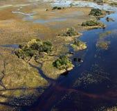 Éléphants africains - delta d'Okavango - le Botswana Photos stock