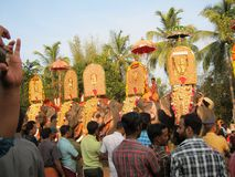 Éléphants d'or dans l'Inde Photos stock