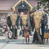 Éléphants de temple dans Kochi, Inde Photographie stock libre de droits
